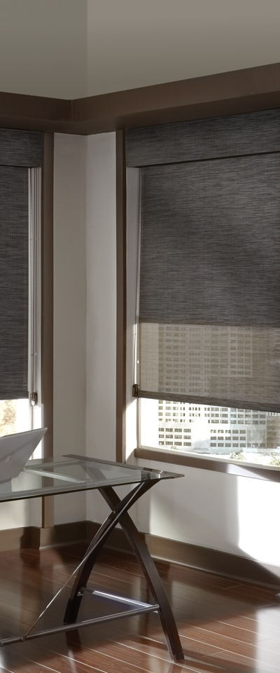 Roller shades austin tx window treatments for Motorized blackout roller shades