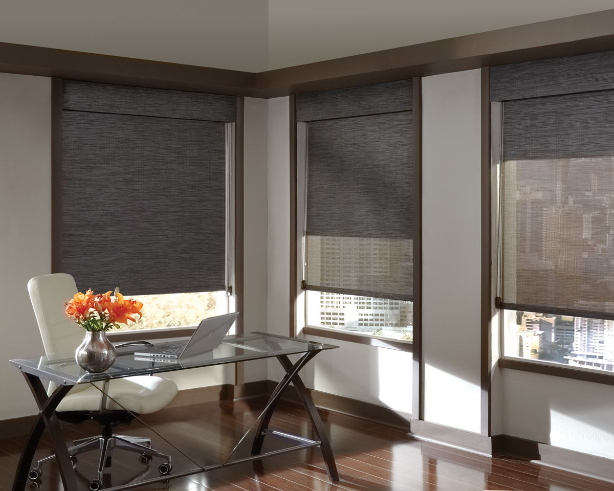 Roller shades austin tx window treatments for Decor blinds and shades