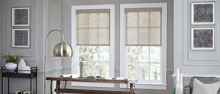 hunter douglas austin roller shades